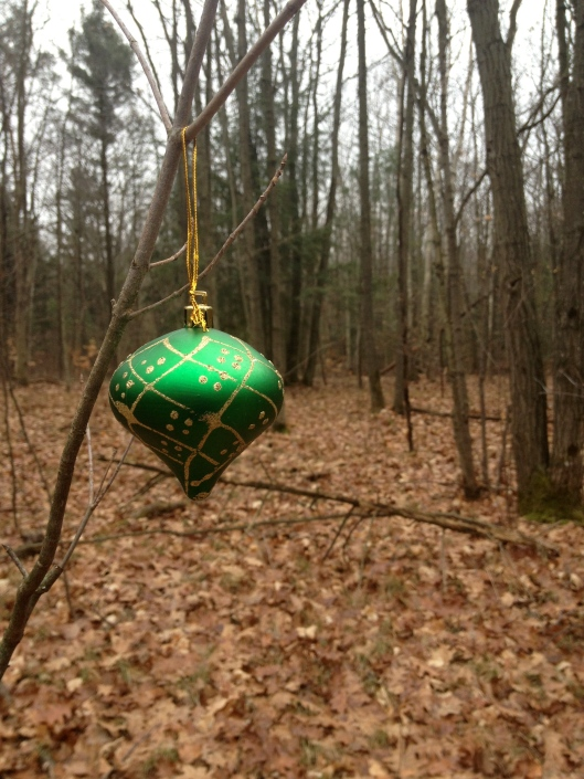 Christmas Spirit on the Trail