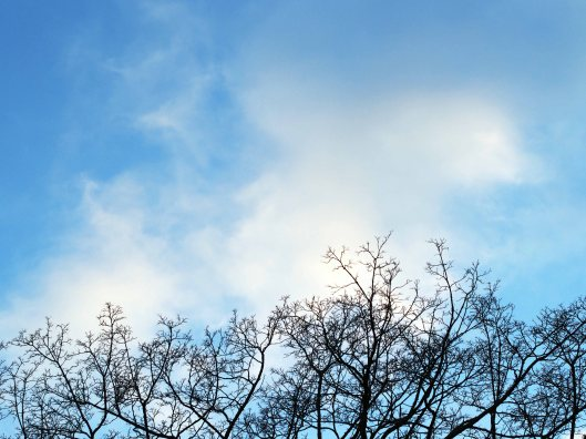 Blue Skies of March