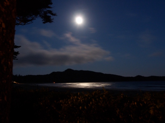 Moon Light on the Pacific